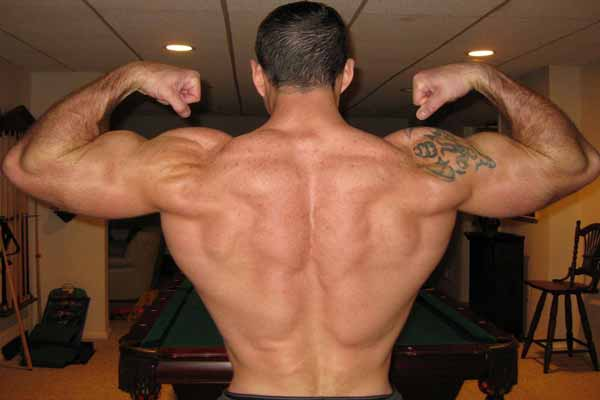back-muscles-1